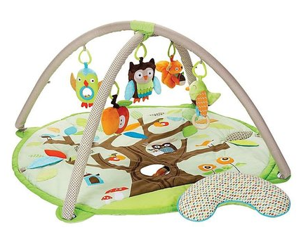 skip hop activity gym
