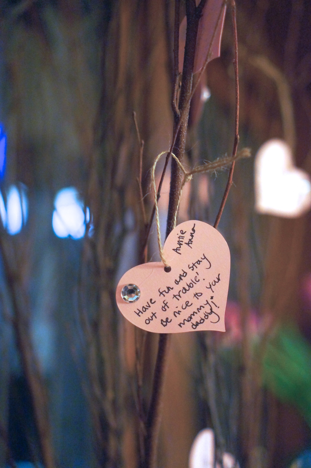 I made a wish tree from Birch branches and made little heart shaped tags with rhinestones of them for guests to write wishes and hopes for her second year.
